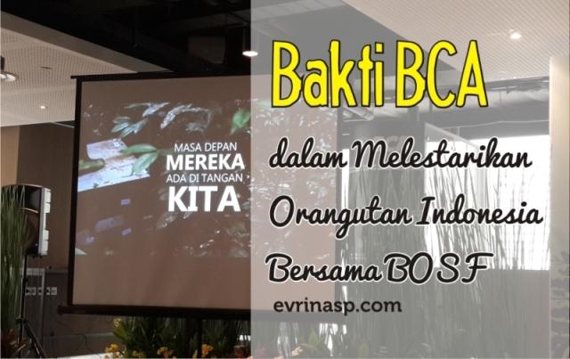 Bakti BCA dalam Melestarikan Orangutan Indonesia Bersama BOSF