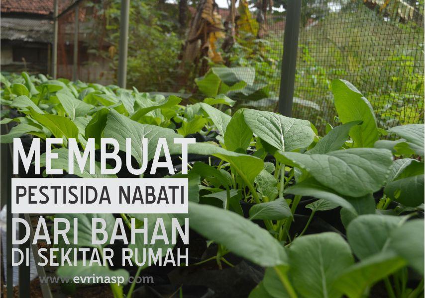 pestisida-nabati