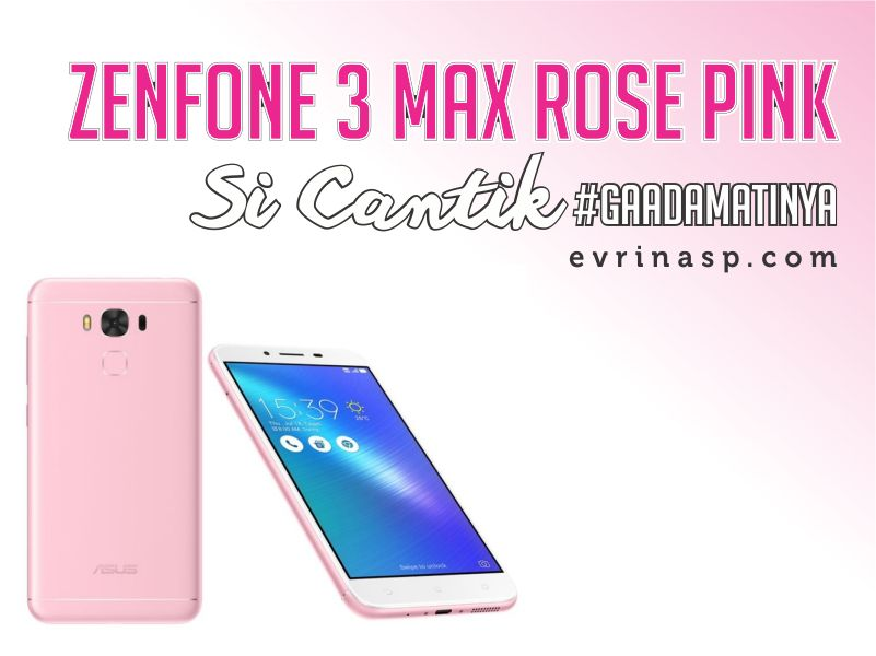 ZenFone 3 Max Rose Pink, Si Cantik yang #GaAdaMatinya