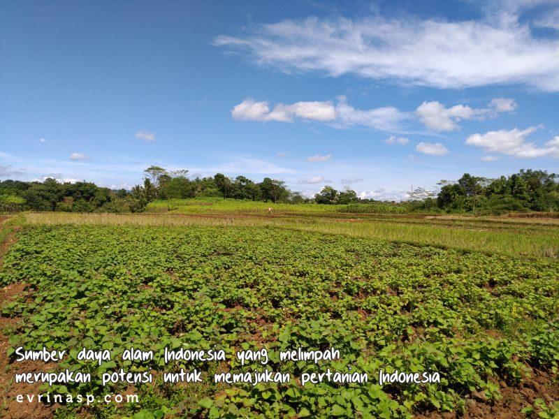 Pertanian Indonesia, Apakah Bisa Maju?