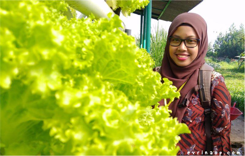 4 Hal Yang Harus Diperhatikan Sebelum Menyewa Villa di Lembang