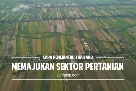 cara_pemerintah_thailand_memajukan_pertanian
