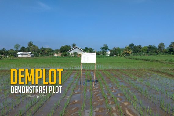 demonstrasi_plot_demplot