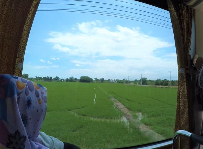 padi_sawah_thailand