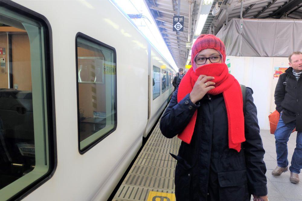 Ingin Berlibur di Hokkaido? Pakai JR Hokkaido Pass Saja